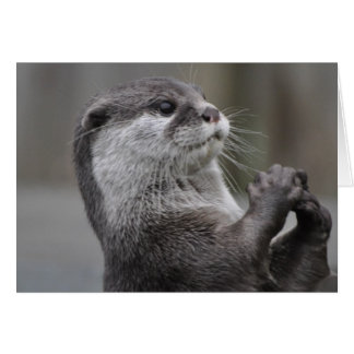 Otter Mastermind Greeting Card
