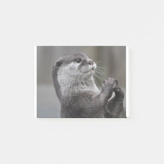 Otter Mastermind Post-it Notes