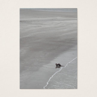 Otter on a beach in Ireland. Business Card