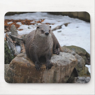 Otter on rock mouse pad