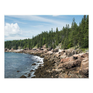 Otter Point Photo Print