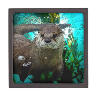 Otter Portrait Premium Keepsake Box
