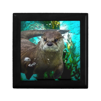 Otter Portrait Trinket Box