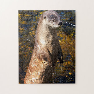 Otter Puzzle