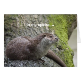 Otter Thoughts Card