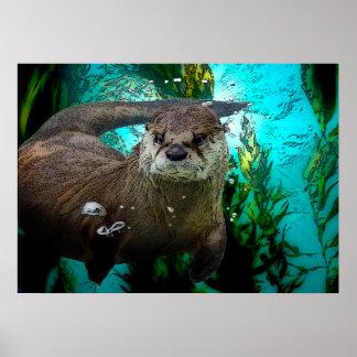 Otter Underwater Poster