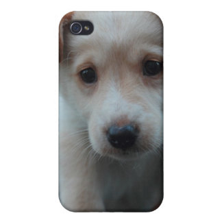 Otterbox for puppy cover for iPhone 4