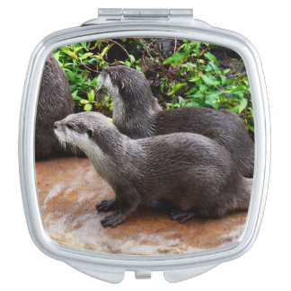 Otterly_Divine_Ladies_Square_Compact_Mirror. Vanity Mirror