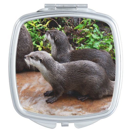 Otterly_Divine_Ladies_Square_Compact_Mirror. Vanity Mirror