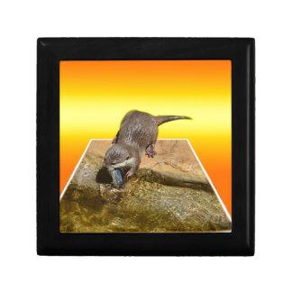 Otterly Orange, Gift Box