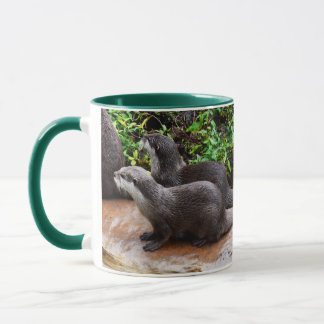 Otterly To Cute, Otter, Green Ringer  Coffee Mug