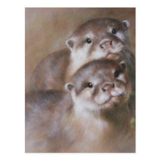Otters Postcard