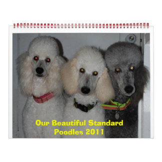 Our Beautiful Standard Poodles 2011 Calendar