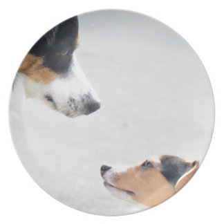 our best friends on four paws - serie 001 plate