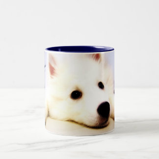 Our Dog Wiess I Photographed! Two-Tone Coffee Mug