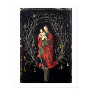 Our Lady of the Dry Tree c.1450 (oil on panel) Postcard