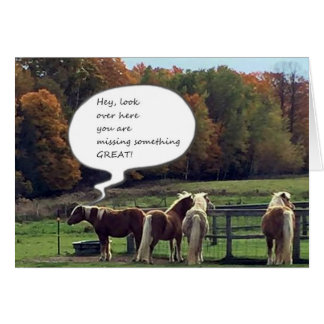 OUR NEIGHBOR'S HORSES WISH YOU **HAPPY BIRTHDAY** CARD