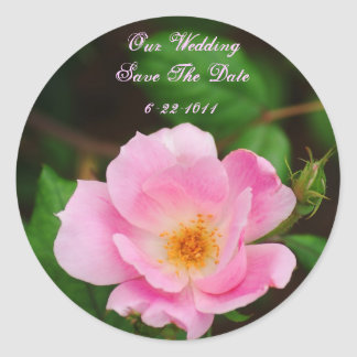 Our Wedding, save the date, pink rose Round Sticker