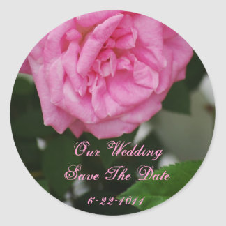Our Wedding, save the date, pink rose Round Stickers