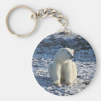 Ours blanc arctique porte-clé rond