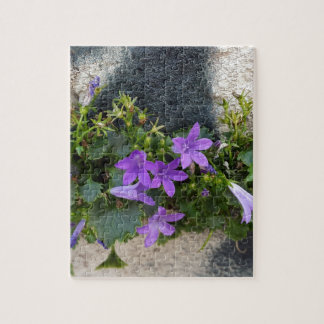 out of the wall flower puzzle