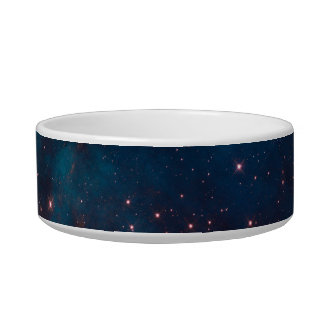 Out of this World Pet Bowl