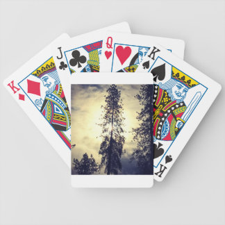Out the kitchen window bicycle playing cards