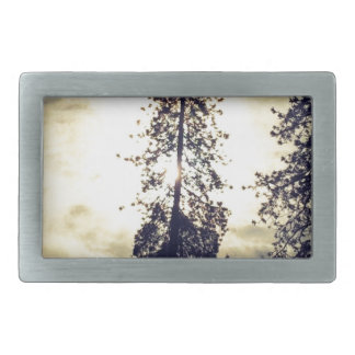 Out the kitchen window rectangular belt buckle