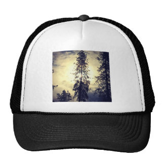 Out the kitchen window trucker hat