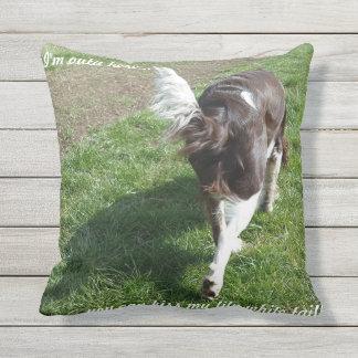 Outdoor cushion/humour outdoor pillow