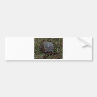 Outdoor Scenes Bumper Sticker