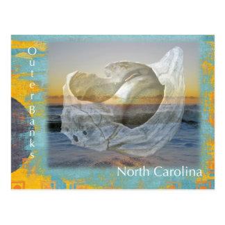 Outer Banks North Carolina Seashell & Surf Postcard