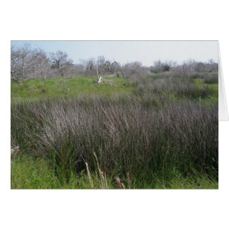 Outer Banks Tidal Salt Marsh Coordinating Items Stationery Note Card