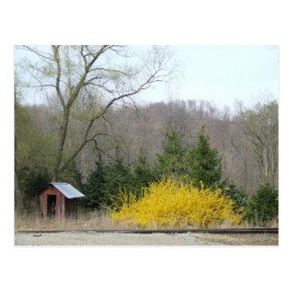 Outhouse Postcard 2