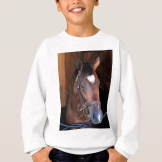 Outrun by Medaglia d'Oro - Indian Vale Sweatshirt