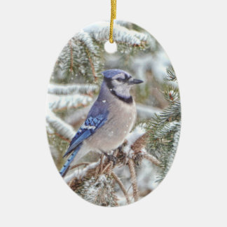 Oval ornament featuring a Blue Jay in snow