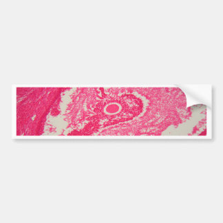 Ovary cells under the microscope. bumper sticker