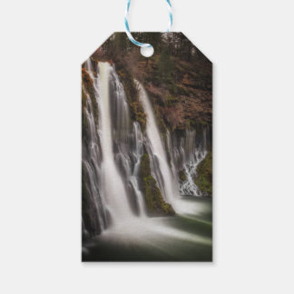 Over the Edge Burney Falls Gift Tags