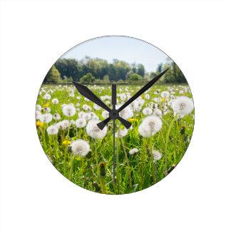 Overblown dandelions in green dutch meadow round clock