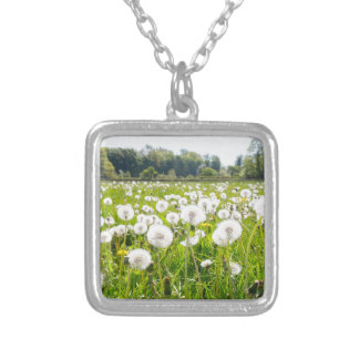 Overblown dandelions in green dutch meadow silver plated necklace