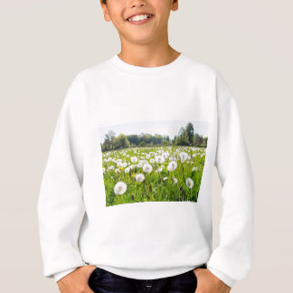 Overblown dandelions in green dutch meadow sweatshirt