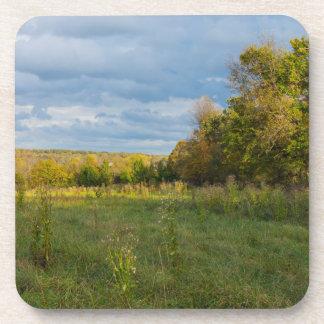 Overgrown Autumn Countryside Coaster