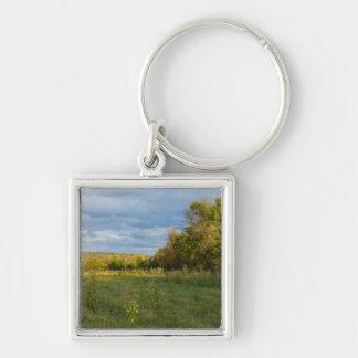 Overgrown Autumn Countryside Keychain