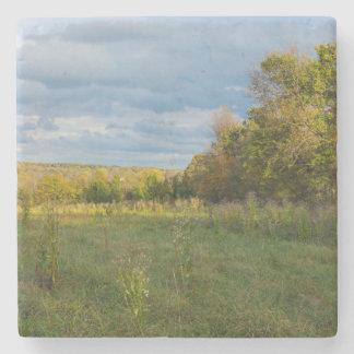 Overgrown Autumn Countryside Stone Coaster