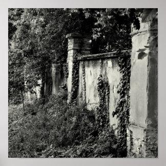 Overgrown garden wall poster