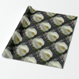 Overhead View of A White Calla Lily Against Pebble Wrapping Paper