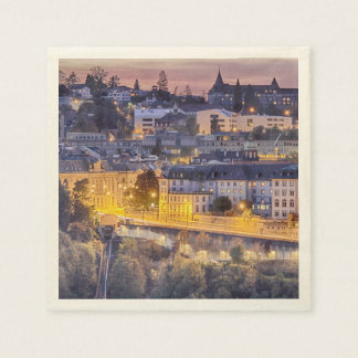 Overlooking Fribourg in the early evening Disposable Napkin