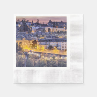 Overlooking Fribourg in the early evening Disposable Napkins