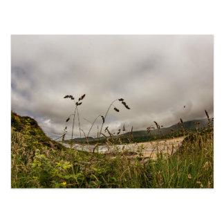 """Overlooking the bay, Ireland"" postcards"