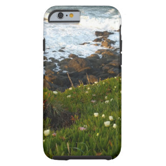 Overlooking the Sea Cliffs in Crescent City Tough iPhone 6 Case